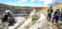 Quelle: Copper Mountain Mining