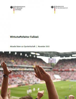 Sonderveröffentlichung Wirtschaftsfaktor Fußball